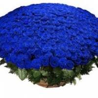 Корзина 301 синяя роза R018