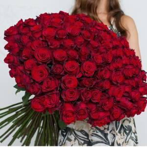 Большой букет 101 красная роза R018