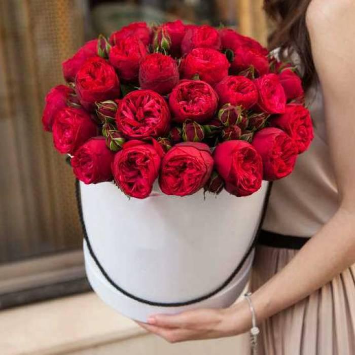 31 ветка красной пионовидной розы в коробке R017