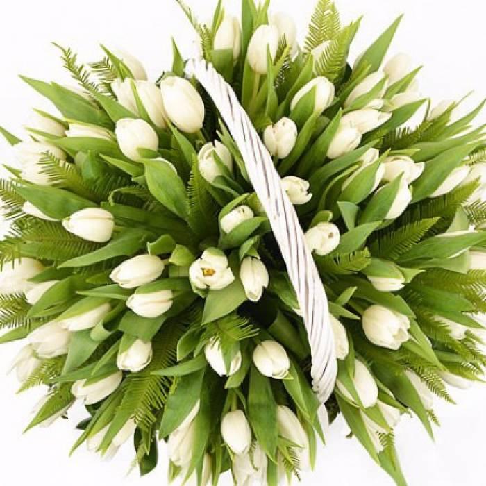 101 белый тюльпан в корзине R005